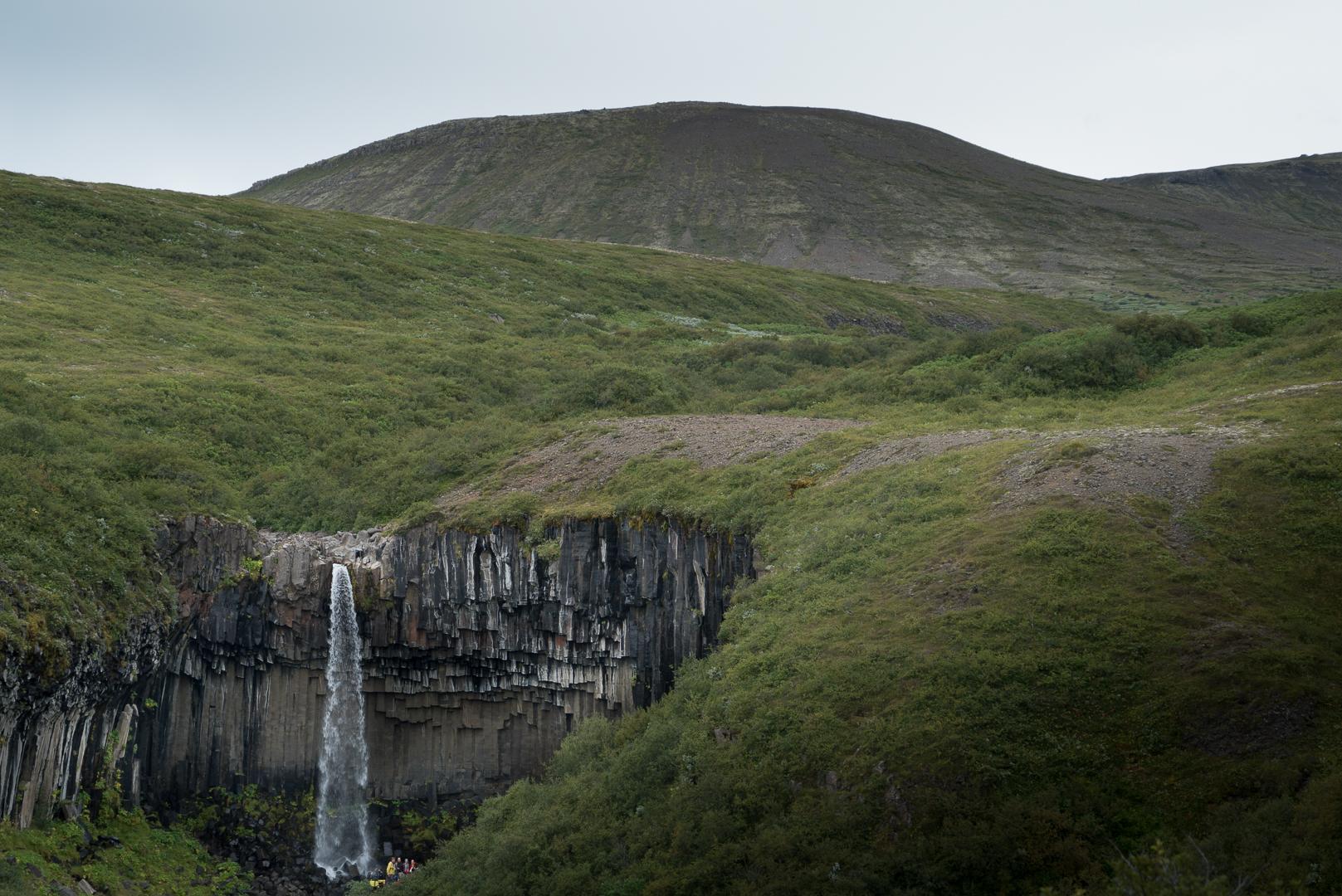 Svartifoss road trip Islande