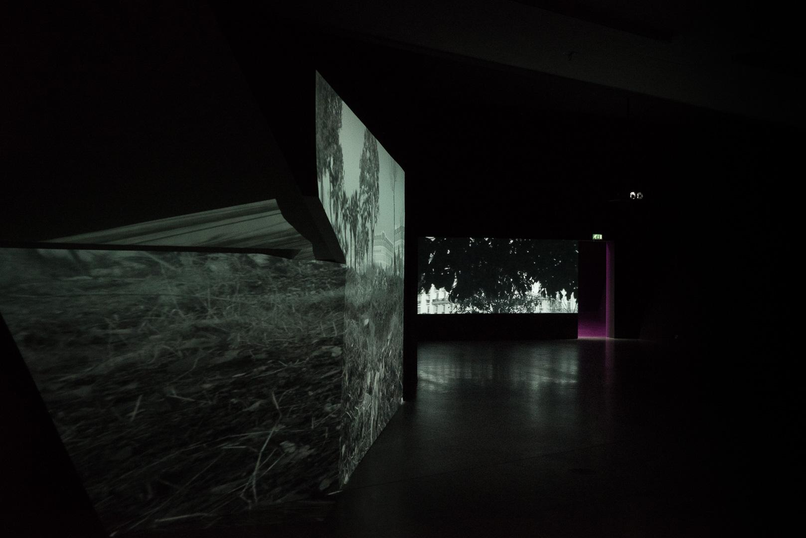 Musée du film