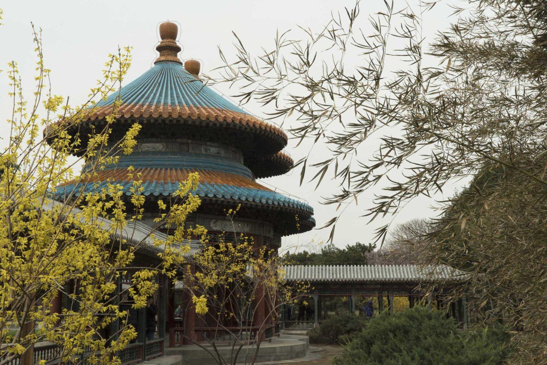 Escale de 9h à Pékin : découverte du Temple du Ciel