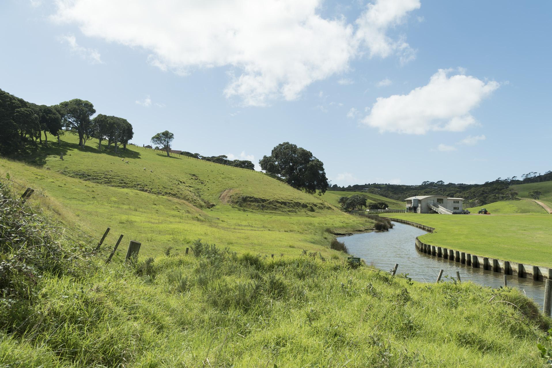Waiheke Island itinéraire 4 jours région Auckland