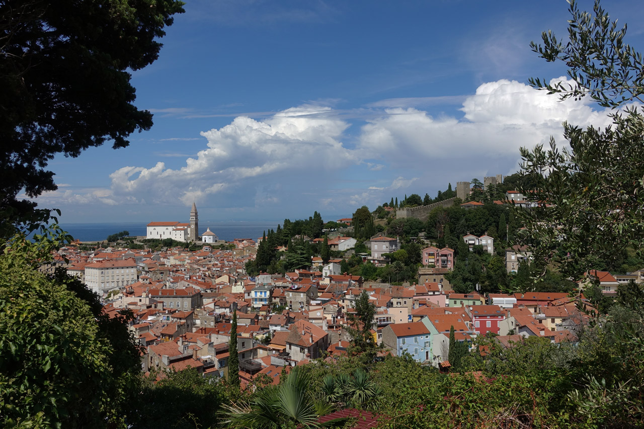 Point de vue Piran