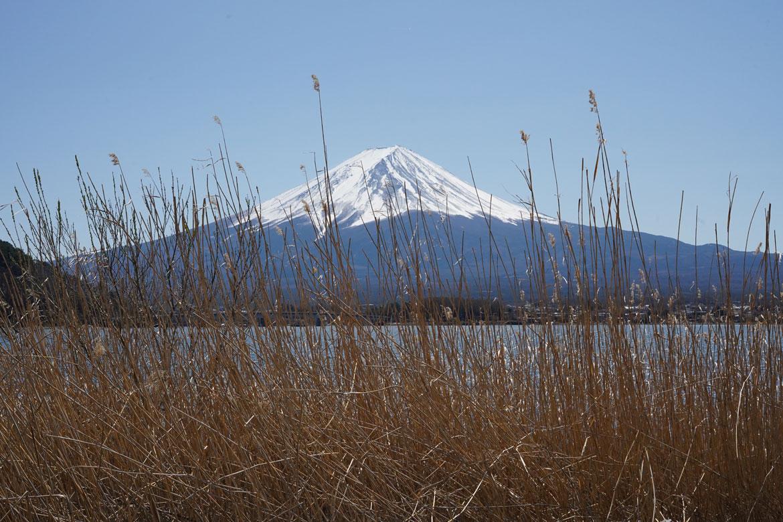 meilleure vue Mont Fuji Kawaguchi région des 5 lacs
