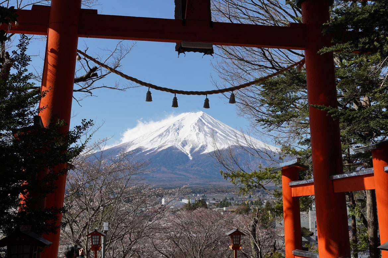 meilleure vue Mont Fuji Kawaguchiko