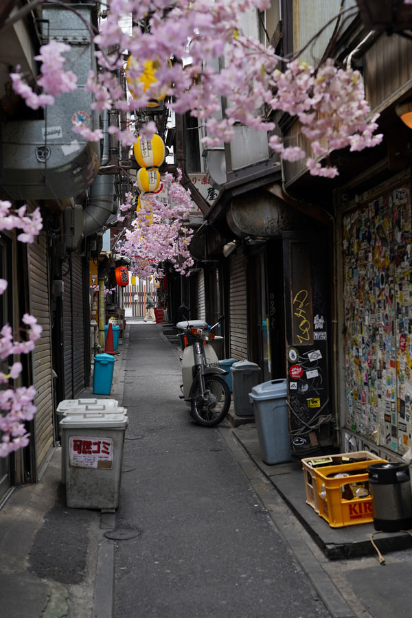 Shinjuku Omoide Yokocho Tokyo que faire