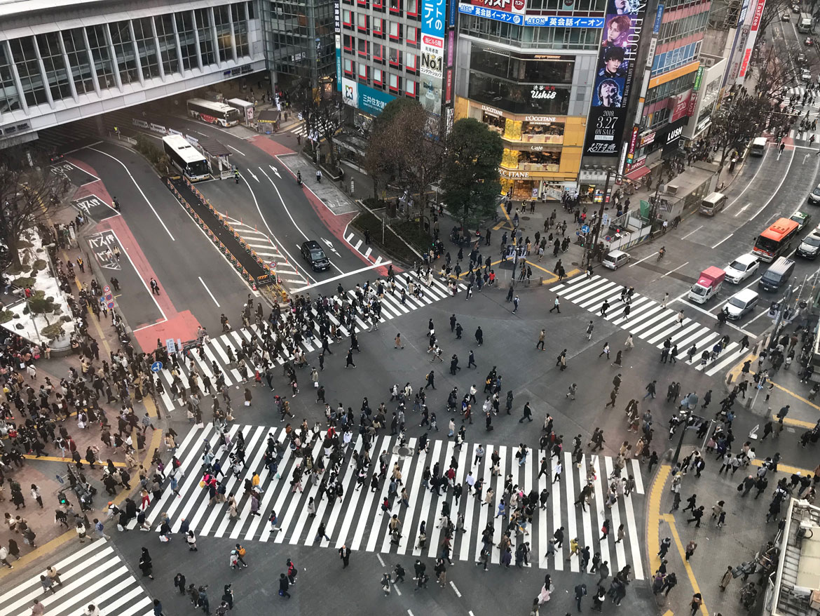 shibuya crossing view