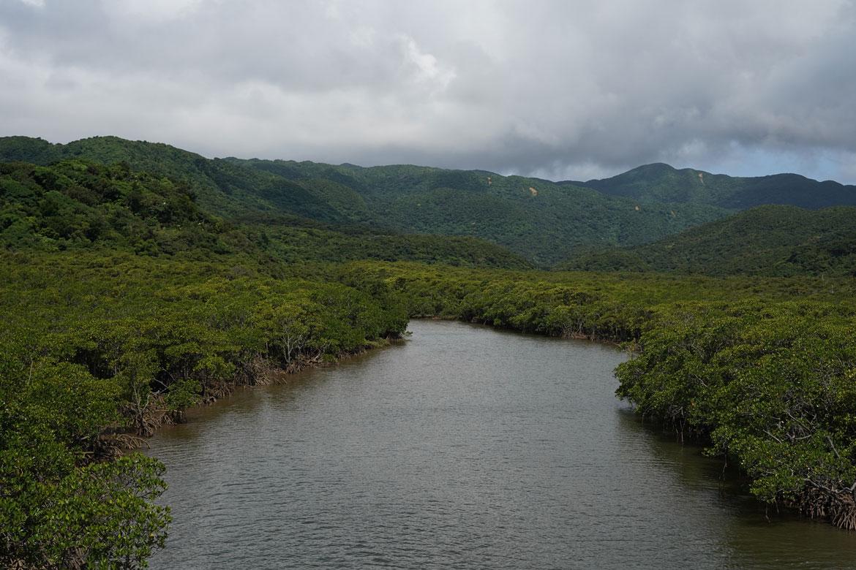 Nakama River