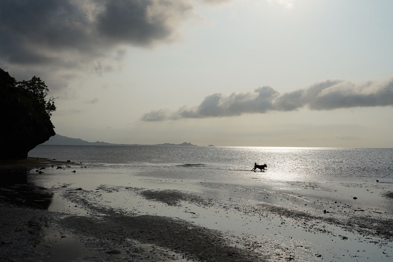 Ishigaki Okinawa 6 jours