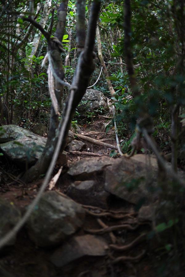 Mont Nosoko randonnée