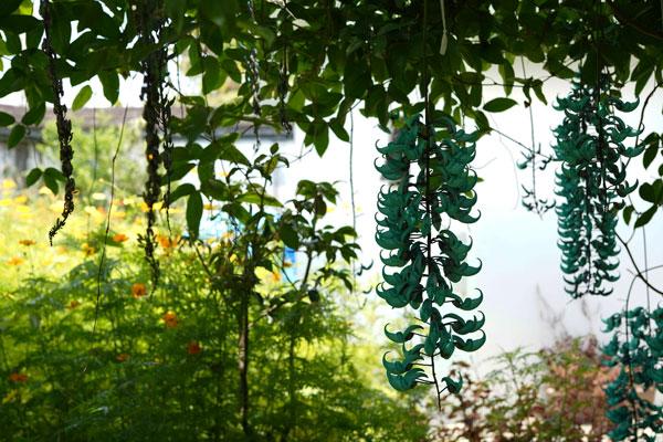 Fukushu-en Garden