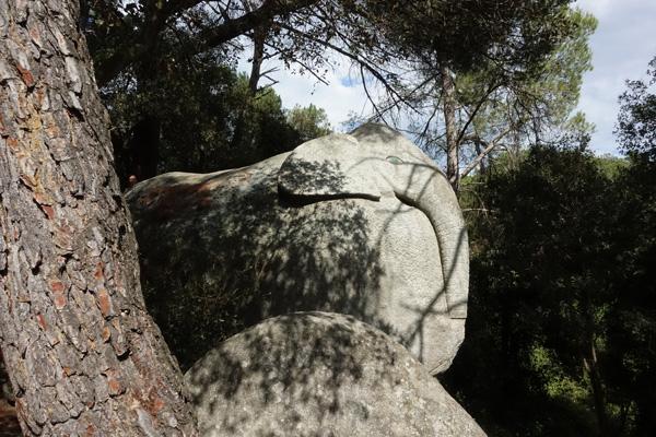 forêt d'Orrius éléphant