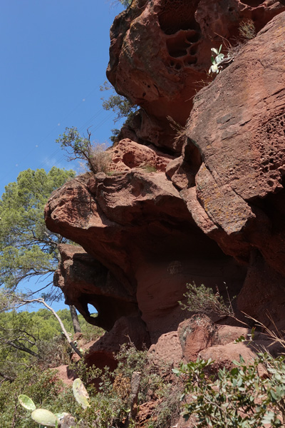 Grottes de Can Riera