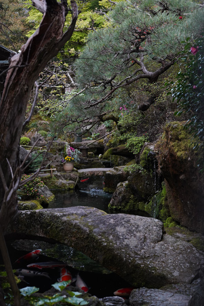 Kyoto paysages