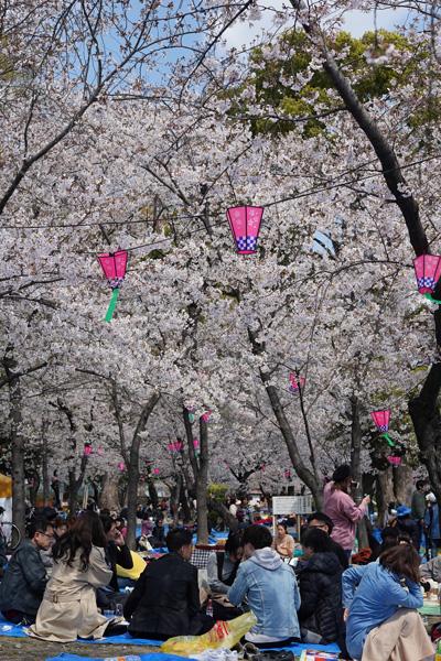 parc tsuruma