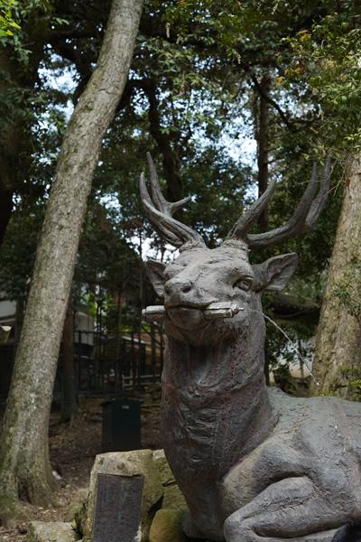 Nara 2 jours que faire