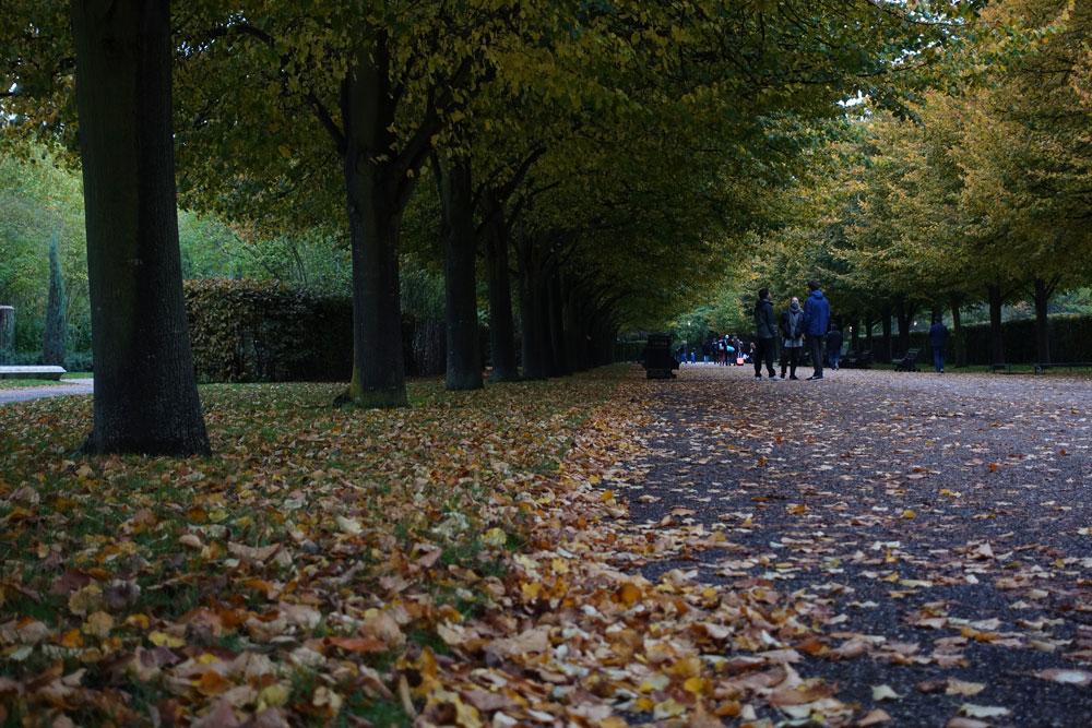 Londres que faire 6 jours Regent's Park