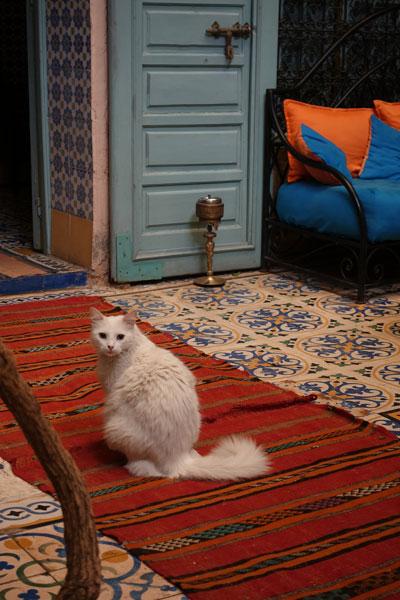 Riad Al Nour Marrakech