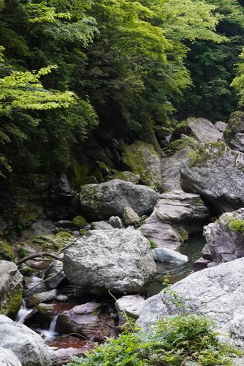 Gorge Nakatsu Shikoku Kochi