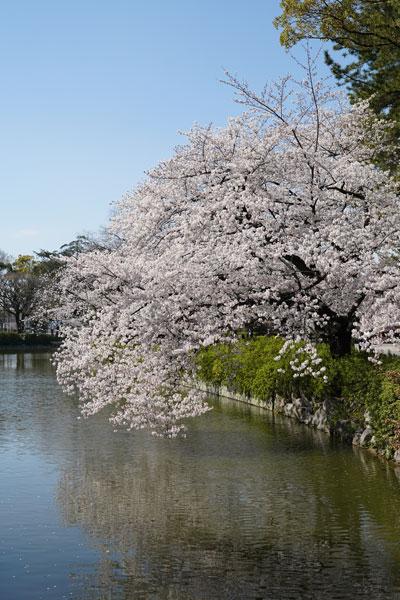 préfecture Aichi Nagoya