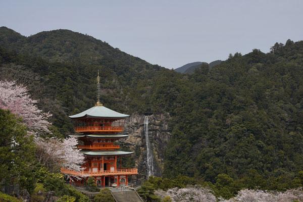 Nachikatsura préfecture wakayama