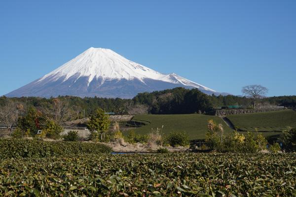 Mont Fuji Japon 10 jours