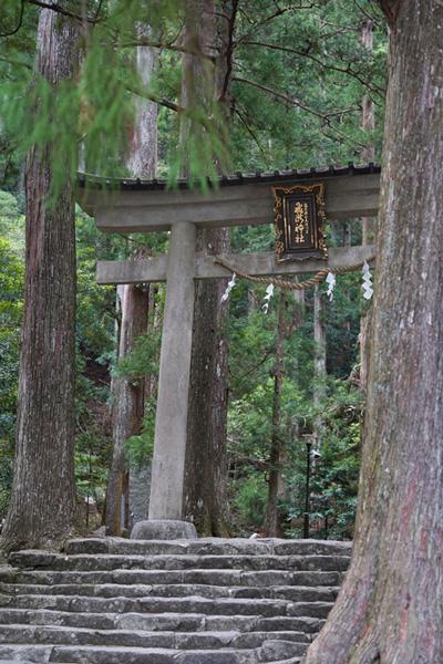 Nachikatsuura Nachi torii