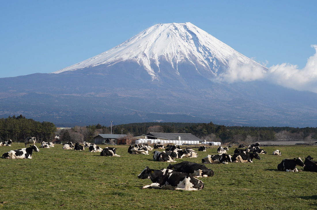 plateau asagiri Shizuoka Fuji