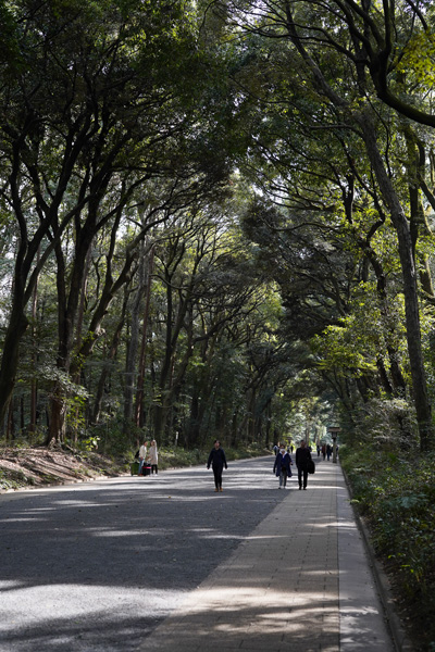 Shibuya Tokyo Yoyogi Park