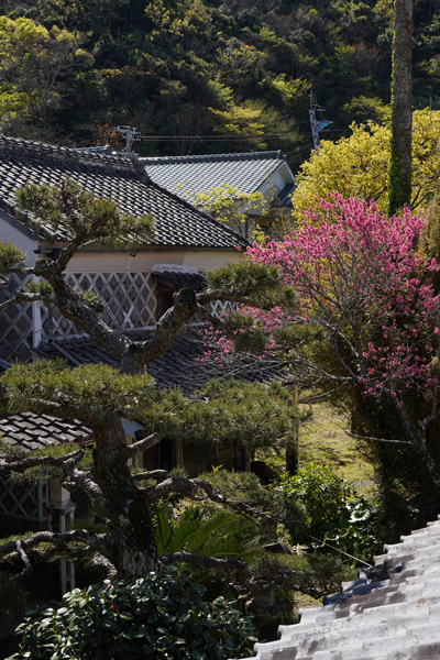Matsuzaki Izu Japon